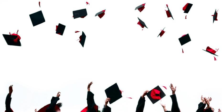 Degrees of readiness: graduates